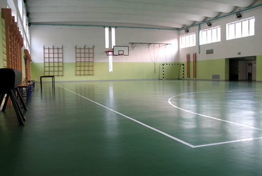 Campi di basket e volley in palestra
